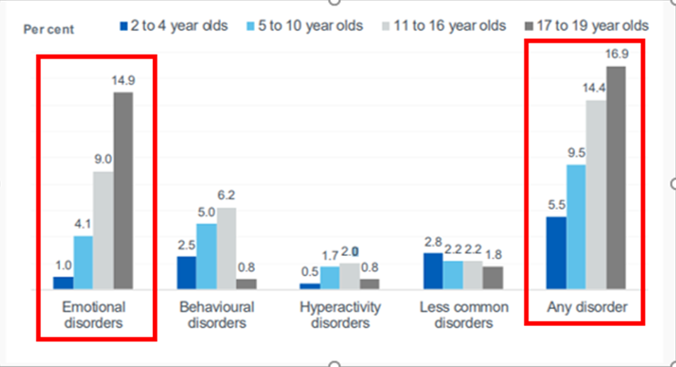 Mental Health Disorders in Children and Young People